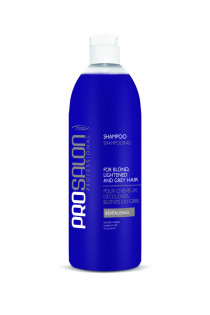 Shampoo for Blond, Lightened and Grey Hair Dầu gội dành cho tóc tẩy